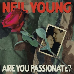 Are You Passionate? Albumcover