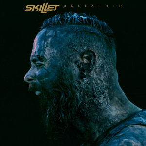 Skillet Watching for Comets cover