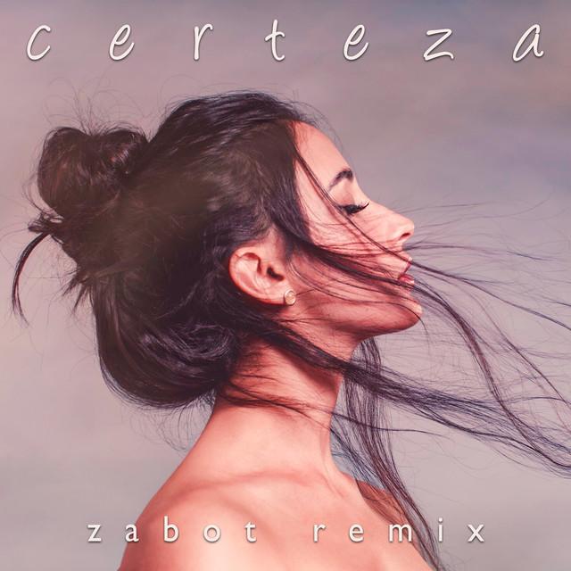 Certeza (Zabot Remix) Image