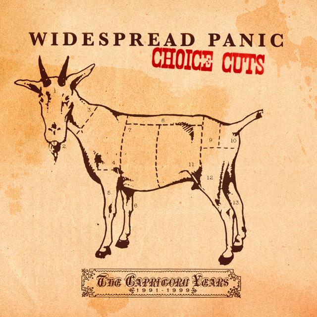 Choice Cuts: The Capricorn Years 1991-1999
