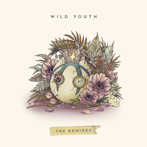 Wild Youth (The Remixes) album cover