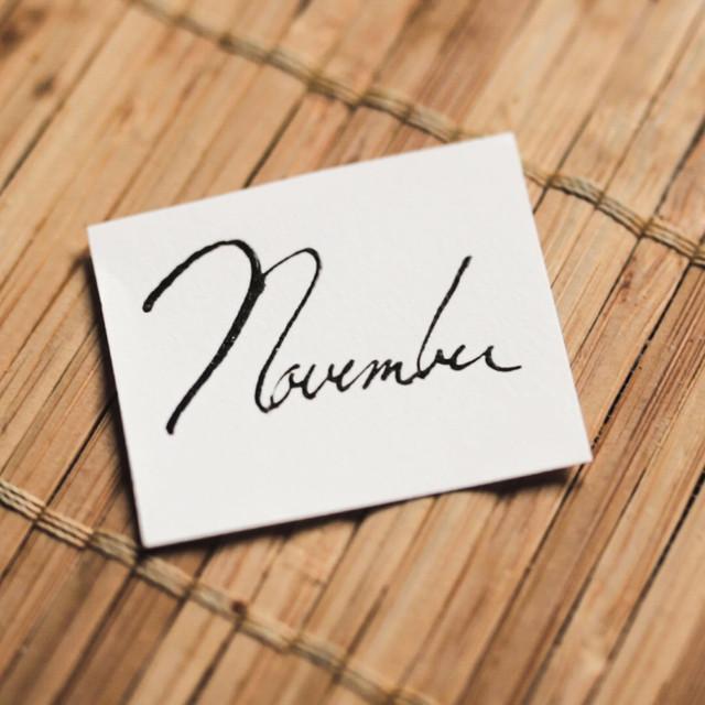 Calendar Project: November
