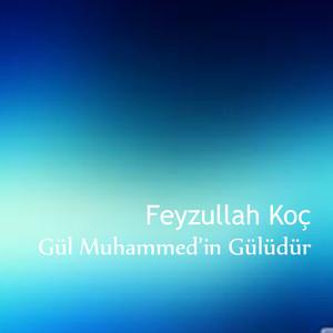 Gül Muhammed'in Gülüdür Albümü