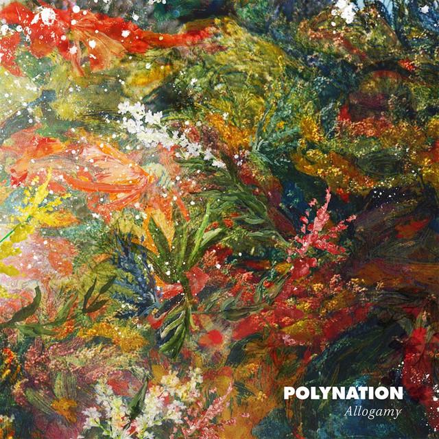 Polynation