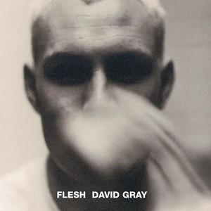 Flesh Albumcover