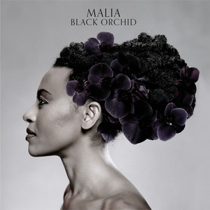 Black Orchid album