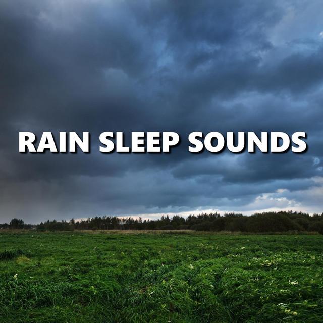 Rain Sleep Sounds