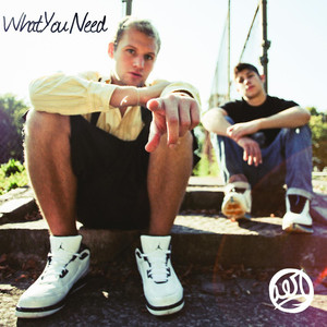 What You Need EP - AER