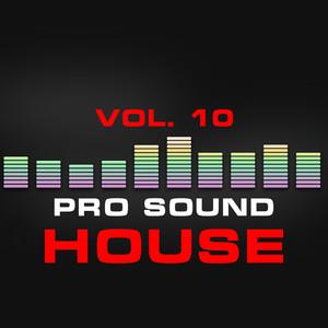 Pro Sound: House, Vol. 10 Albumcover