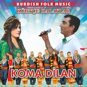 Kürtçe Halaylar (Kurdish Folk Music) Albümü