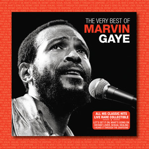 Marvin Gaye Sexual Healing (Live) cover