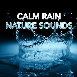 Calm Rain Nature Sounds Albumcover