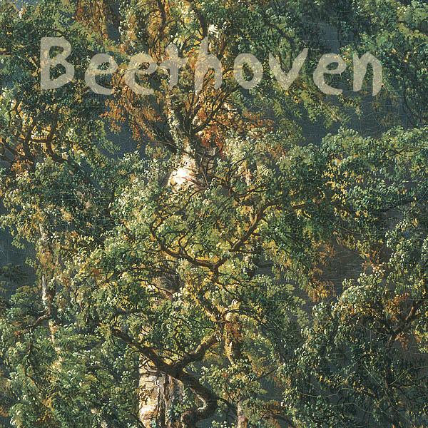 Beethoven Sonatas vol I Albumcover
