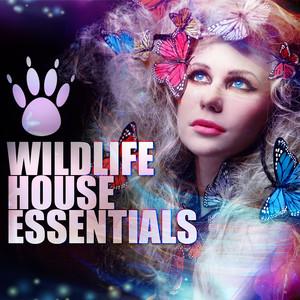 Wildlife House Essentials album