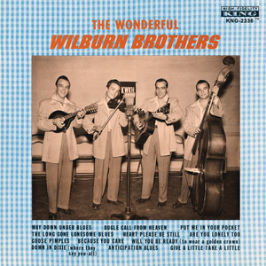 The Wonderful Wilburn Brothers - Wilburn Brothers