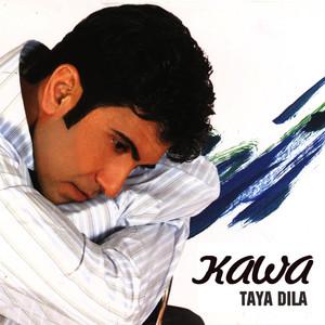 Taya Dila Albümü