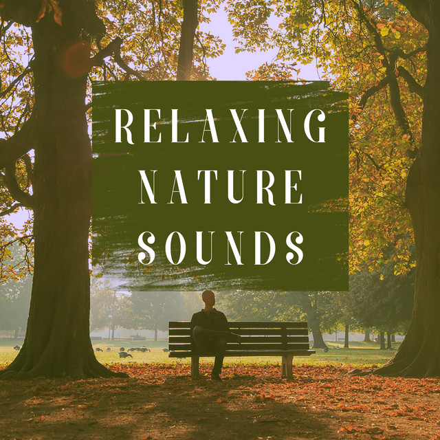 Album cover for Relaxing Nature Sounds by Lluvia del Bosque