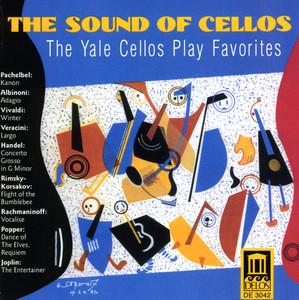 Cello Music - Pachelbel, J. / Vivaldi, A. / Albinoni, T. / Rimsky-Korsakov, N. / Rachmaninov, S.  - Johann Pachelbel