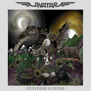 Feathers & Flesh - Avatar