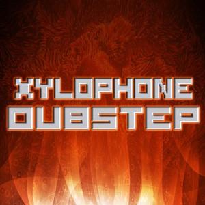 Xylophone Dubstep Remix 2013