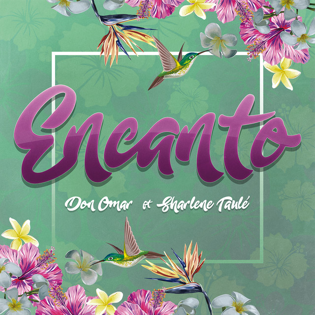 Don Omar Encanto album cover