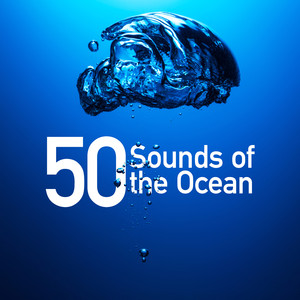 50 Sounds of the Ocean Albumcover