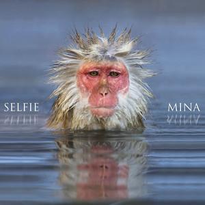 Selfie album