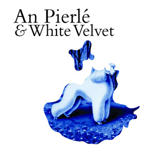 An Pierlé & White Velvet album