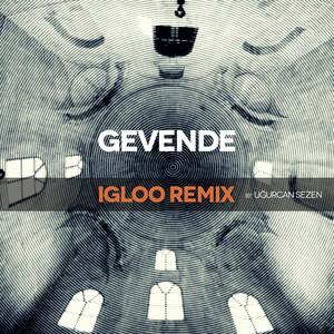 Igloo (Remix) Albümü