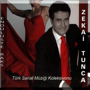 Endülüs'te Raks (Türk Sanat Müziği Koleksiyonu) Albümü