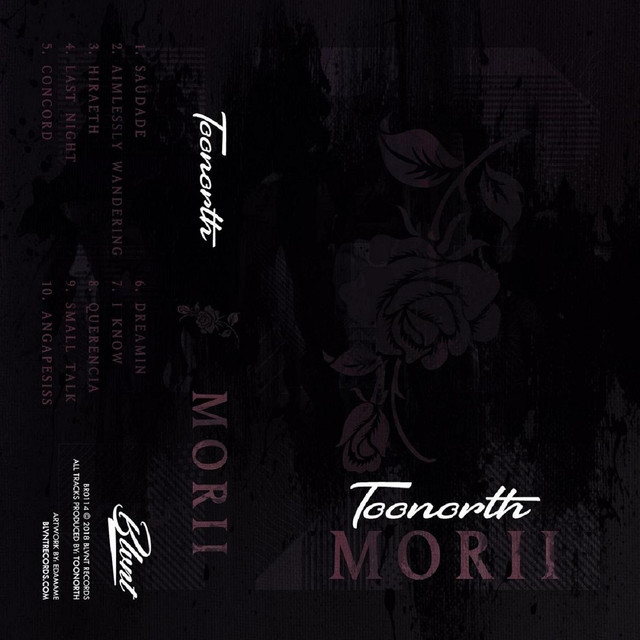 Album cover for Morii by Toonorth
