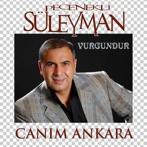Vurgundur / Canım Ankara Albümü