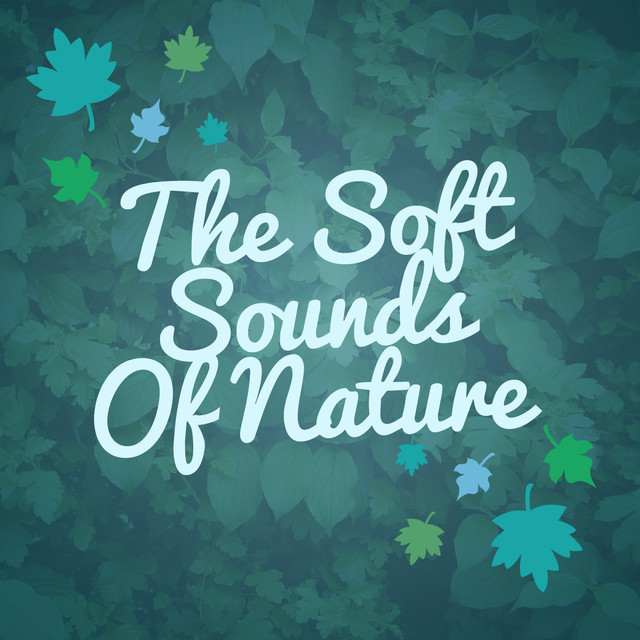 The Soft Sounds of Nature Albumcover