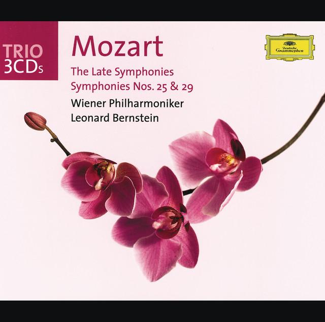 Symphony in D Major, D. 25 album cover
