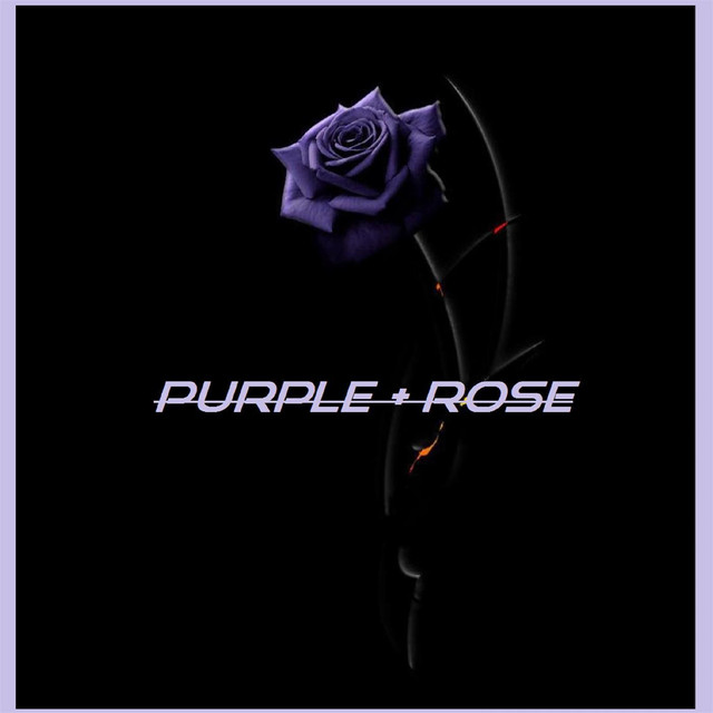 Album cover for PURPLE ROSE by Various Artists