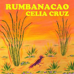 Rumbanacao