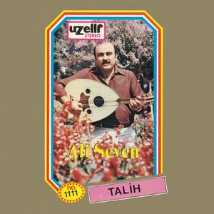 Talih Albümü