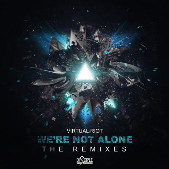 We're Not Alone (The Remixes)