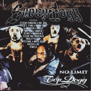No Limit Top Dogg album