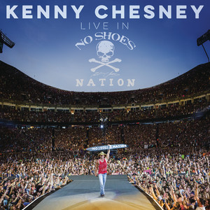 Kenny Chesney, Grace Potter You and Tequila cover