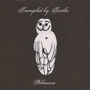 Palomino - Trampled By Turtles