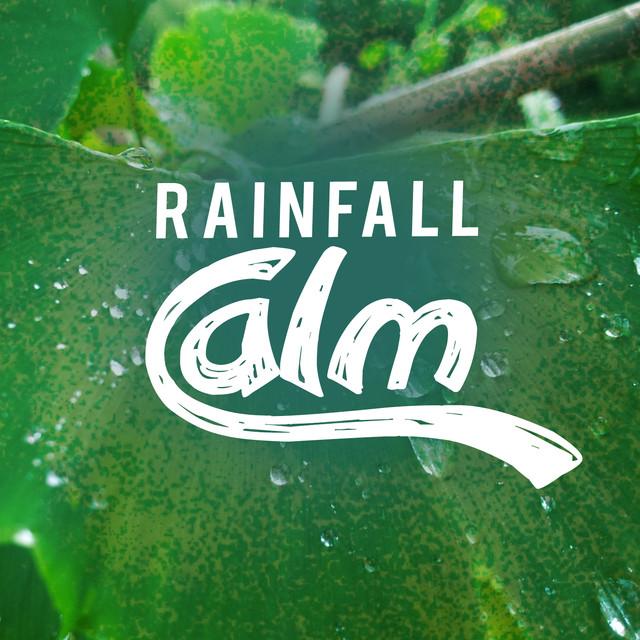 Rainfall Calm Albumcover