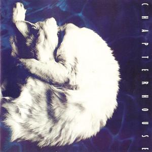 Whirlpool album