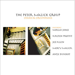Peter Malick Into The City cover
