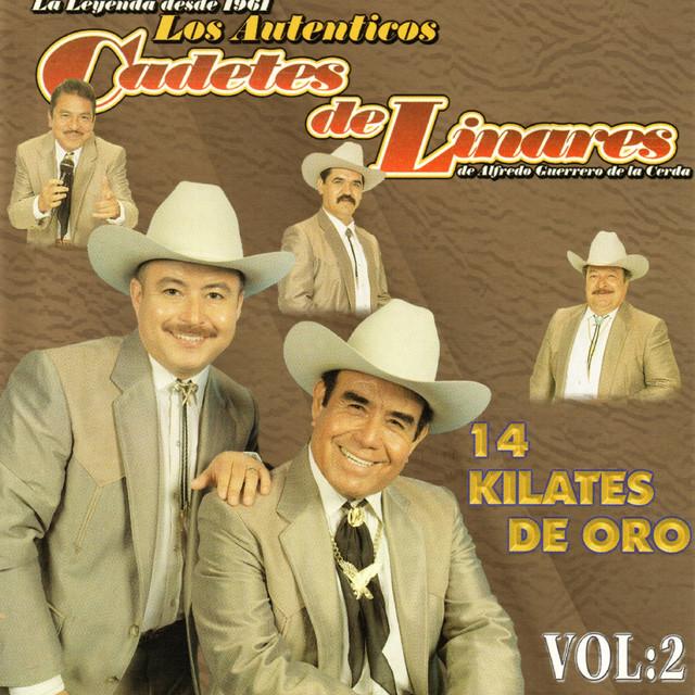 Album cover for 14 Kilates de Oro, Vol. 2 by Los Cadetes De Linares