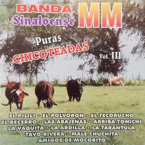 Puras Chicoteadas, Vol. 3 Albumcover