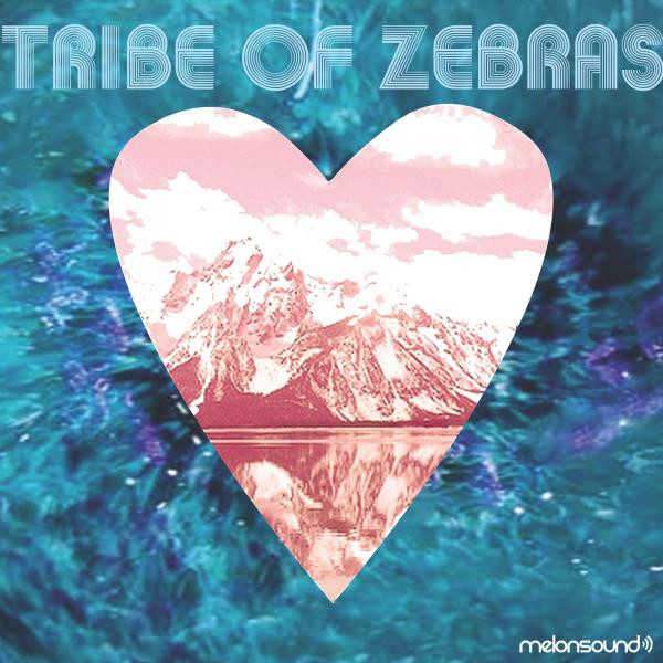 Tribe Of Zebras