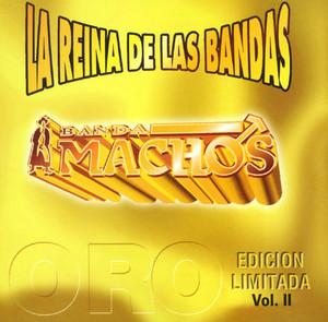 La reina de las bandas Vol. II album
