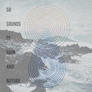50 Sounds of Rain and Nature