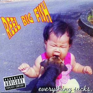Everything Sucks album